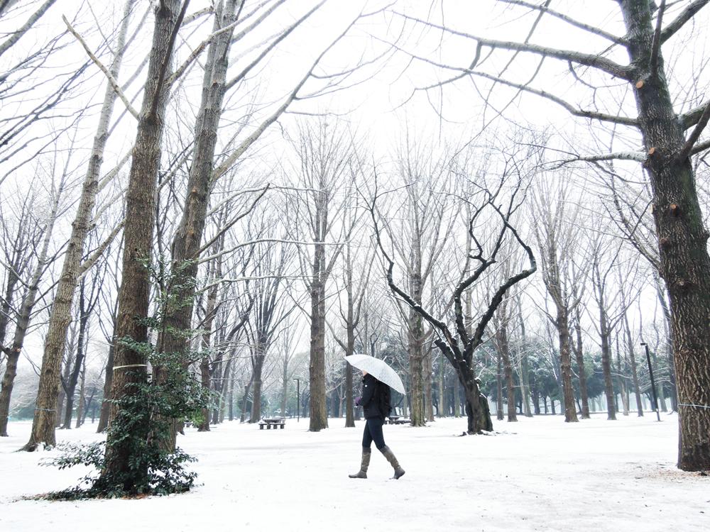 日本野鳥の会バードウオッチング長靴 再入荷のお知らせ&雪の日編